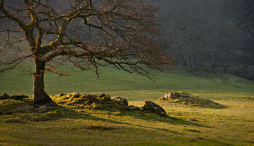 2nd Cumbria_Evening_Light-Chris_Cartlidge