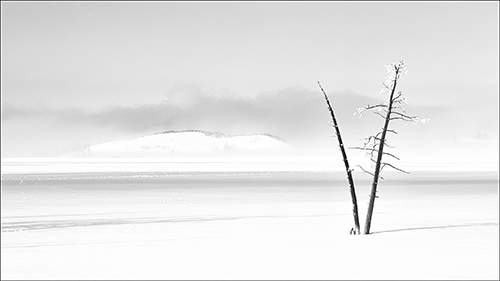 Winter Solitude in Mono winning three awards