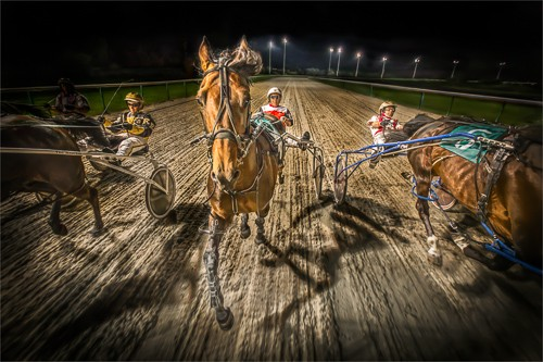 Racing For Home by Paul Hassell