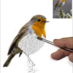 CRE 1-- Paul Sutton - Painting the Robin
