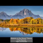 05_Autumn in the Grand Tetons_Paul Reynolds