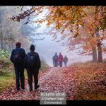 07_Autumn stroll_Graham Orgill