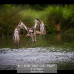 01_THE ONE THAT GOT AWAY_Les Wiggin
